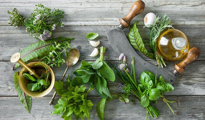 herbs on kitchen counter